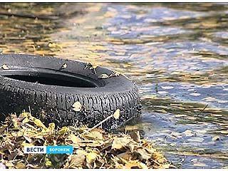 Как очистить Воронежское водохранилище?