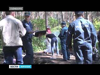 Как в лесах области соблюдают противопожарный режим - проверили спасатели