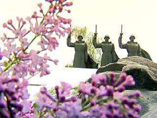 Ко Дню Победы в Воронеже приведут в порядок все братские могилы