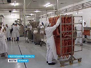 """Компания """"Приосколье"""" выводит на проектную мощность завод """"Славная марка"""""""
