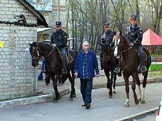 Конный дозор патрулирует улицы Воронежа