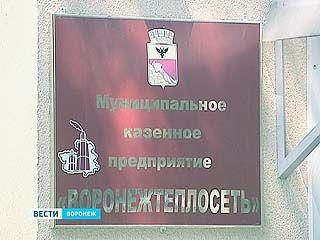 """Контрольно-счетная палата проверит """"Воронежтеплосеть"""""""