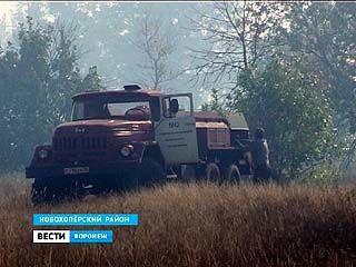Крупный пожар тушили на 100 гектарах земли в Новохопёрском районе