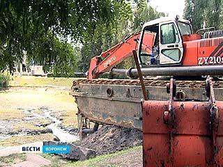 Лебединое озеро на Минской вернут к жизни