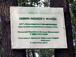 Лесники не согласны отдать лес около Ямного под дачную застройку