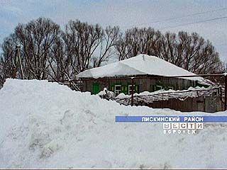 Лиски утопают в снегу