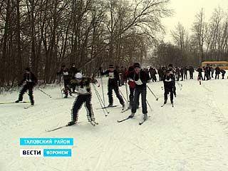 Лыжный пробег в память человека, возглавлявшего институт имени Докучаева