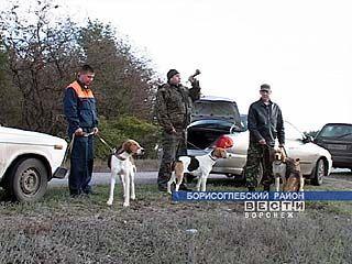 Любители охоты с русскими пегими гончими съехались в Борисоглебский район