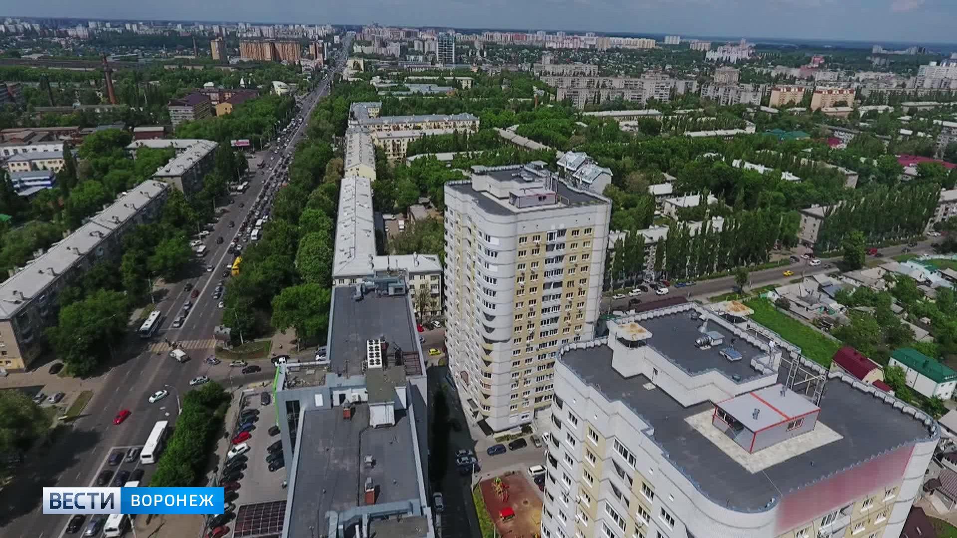 Ромашкин луг и Песчаная гора. Аналитики назвали самые необычные улицы Воронежа