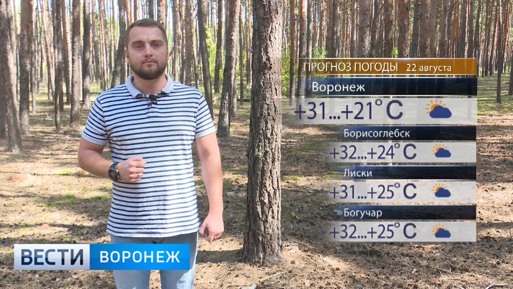 Прогноз погоды с Ильёй Савчуком на 22.08.17