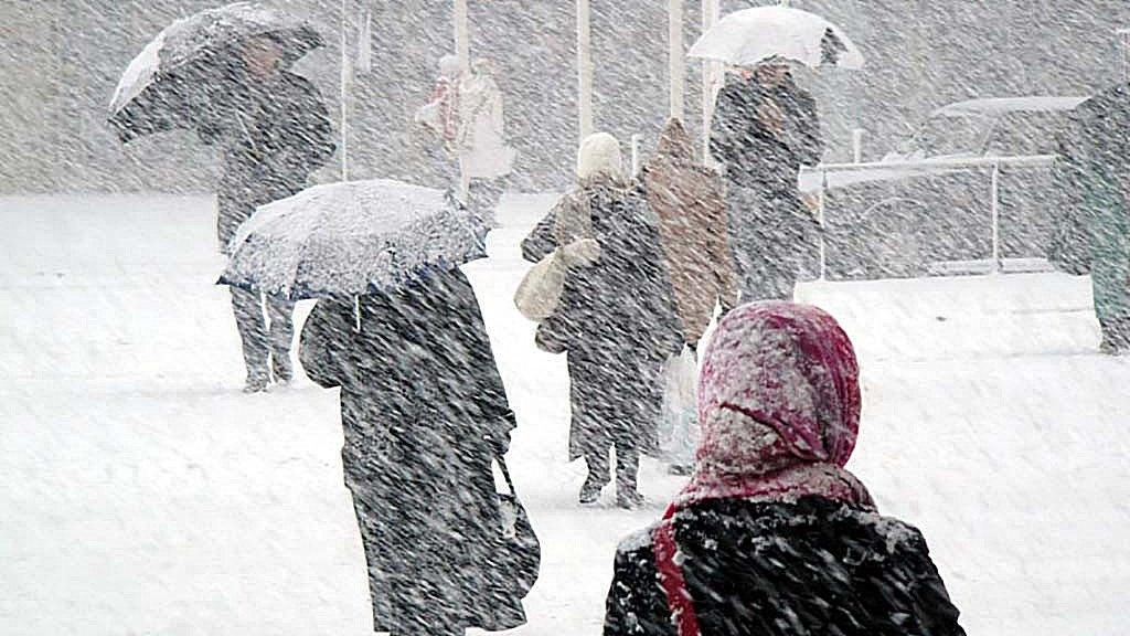Жителей Воронежской области в выходные ждут метель и дождь