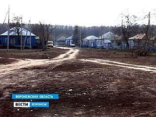 Массовая оценка земель началась в Воронежской области