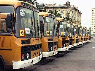 Мэр Воронежа дал указание открыть специальный автобусный маршрут