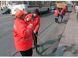 Мэрия призывает воронежцев очистить город от мусора
