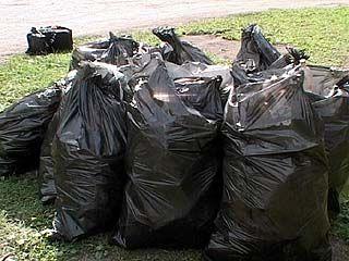 Мешки с мусором получат воронежские чиновники по почте