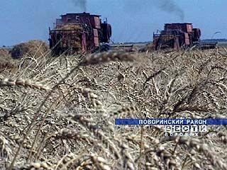 Министр сельского хозяйства выразил благодарность воронежским труженникам