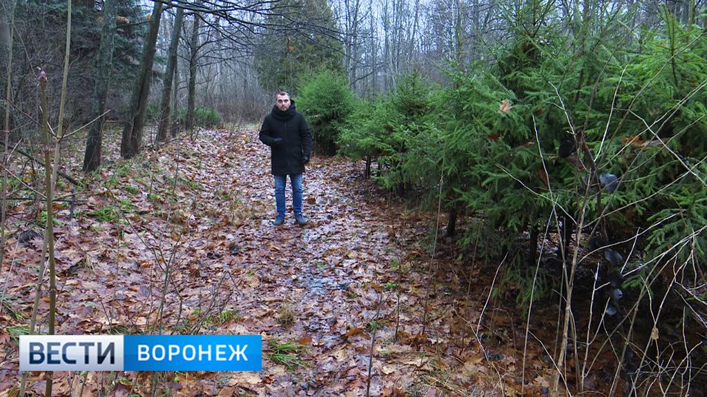 Прогноз погоды с Ильёй Савчуком на 16 – 17.12.17