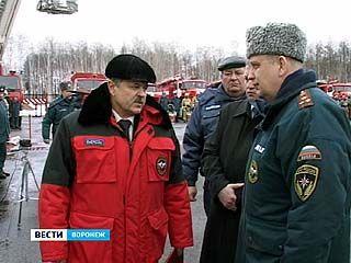 Московская комиссия оценила готовность Воронежа к лесным пожарам