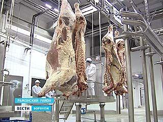 Мраморное мясо из Рамони. Крупнейший мясоперерабатывающий комплекс открылся в рекордные сроки
