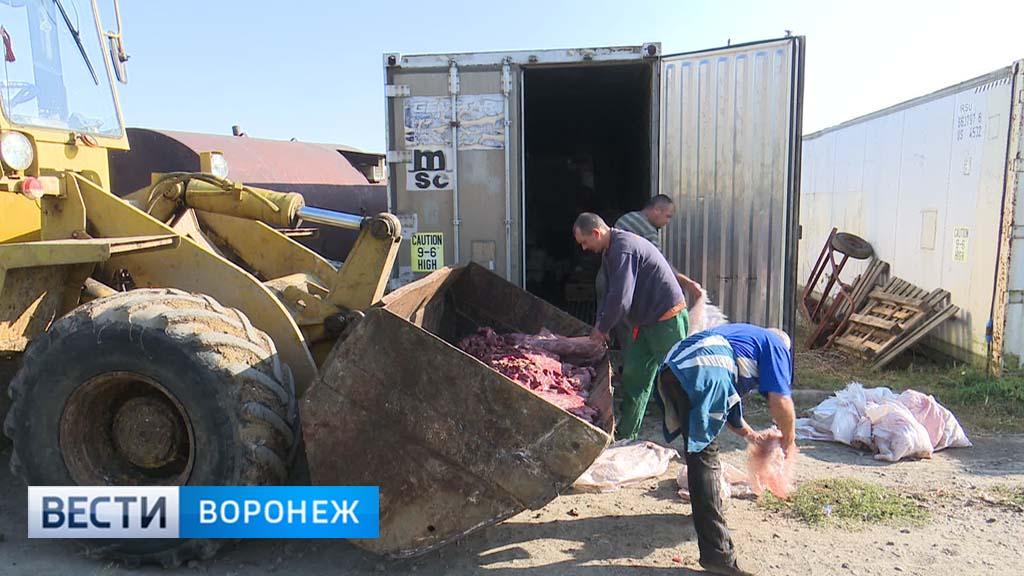 В Воронежской области утилизировали 21 тонну опасного мяса