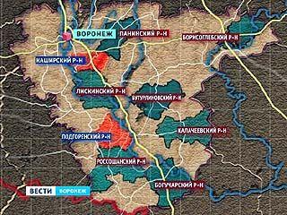 Мусор в Воронежской области утилизировать будут по сортам