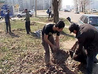Мусульманская община присоединилась к общегородскому субботнику