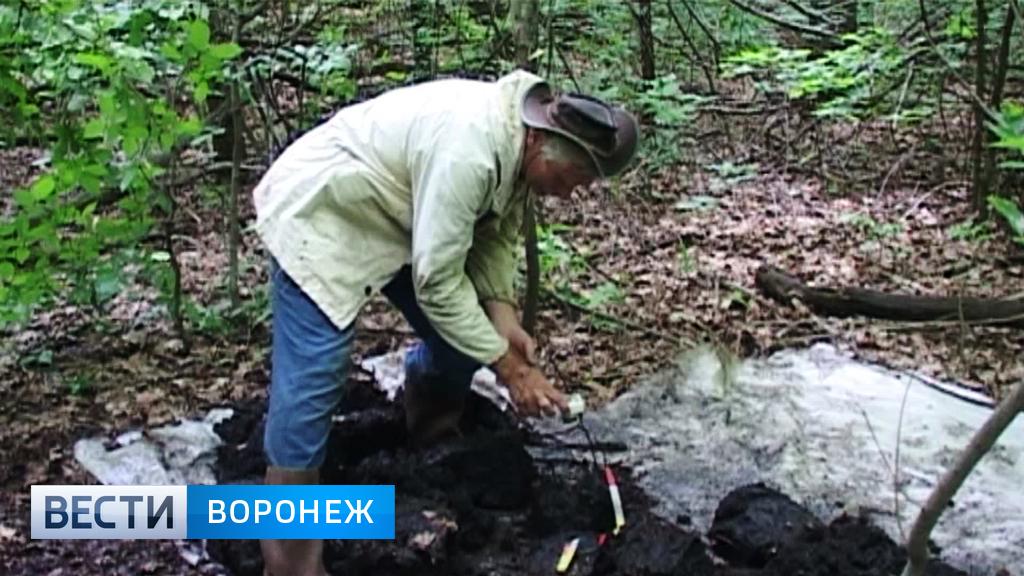 Московские учёные-почвоведы составляют новую карту Каменной степи