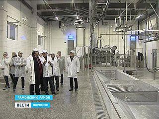 Мясной кластер Воронежа порадовал столичных контролёров не меньше молочного