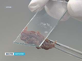 Мясо, которым торгуют в палатке у Центрального рынка, опасно для здоровья