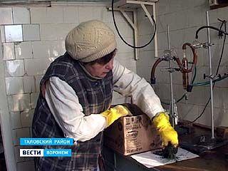 """На агрохимической станции """"Таловская"""" исследуют монолиты"""