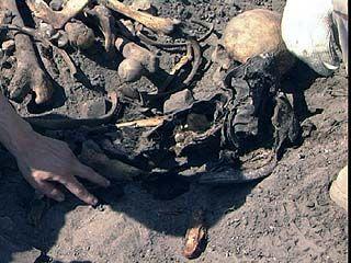 На Чижовке были найдены останки одного из погибших бойцов