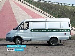 На федеральных дорогах появятся дополнительные посты сотрудников Россельхознадзора
