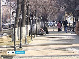 На карте Воронежа появились 19 зелёных зон с весьма своеобразными названиями