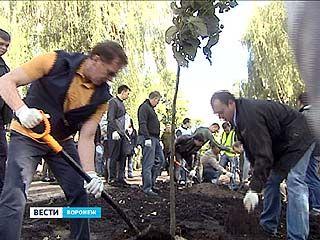 На общегородском субботнике убрали 300 свалок и заложили новый парк