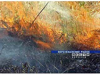На одном из полей Верхнехавского района пожар уничтожил весь урожай