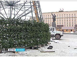 На площади Ленина начался монтаж новогодней ёлки