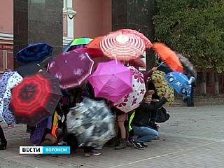 На проспекте Революции провели День зонтиков
