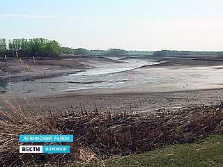 На самом большом пруде в Аннинском районе прорвало плотину