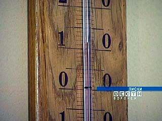 На столбике термометра Лискинского музея 11 градусов тепла