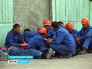 На строительстве Подгоренского цементного завода работают десятки мигрантов