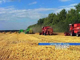 На территории Воронежской области идет уборка зерновых
