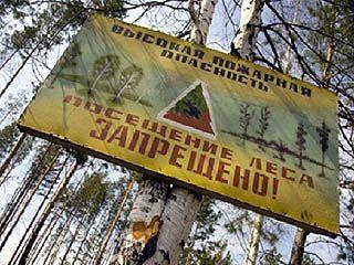 На территории Воронежской области введён особый противопожарный режим