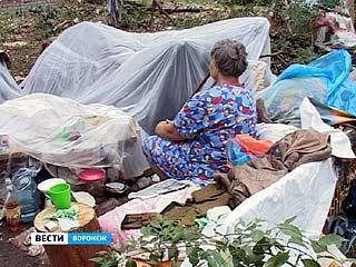 На улице Костромского воронежская семья два месяца ютится в палатках
