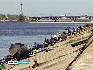 На Воронежском водохранилище прошли соревнования по спортивной ловле рыбы