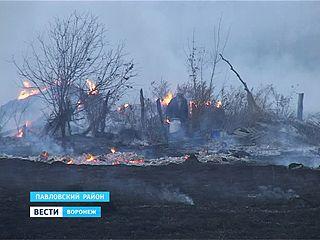 На юге Воронежской области снова пожар из-за поджогов травы