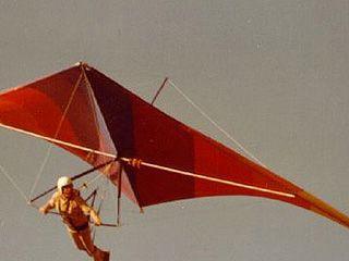 Над Верхним Мамоном состоялось мини-авиашоу дельтопланеристов