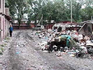 Наводить чистоту в Воронеже будут по закону