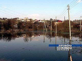 Наводнение в Воробьевке: грунтовые воды или прорыв водопровода?