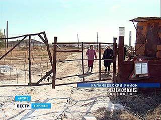 Неиспользуемых полей в Воронежской области стало меньше на треть