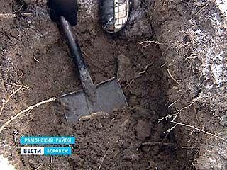 Неизвестную братскую могилу обнаружили поисковики в районе села Чертовицы